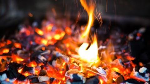 Vild med ild og mad for singler