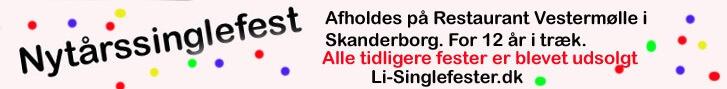 Nytårsfest for singler 2015.