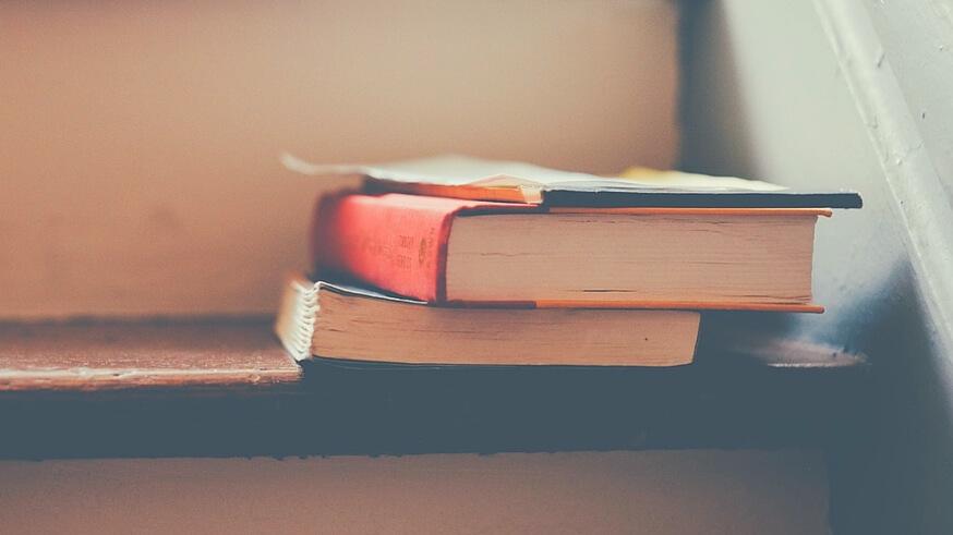 bøger man bør læse dating 50 match