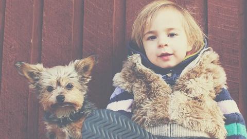 Til singleforældrene: 4 typer legetøj der erstatter iPad'en som babysitter